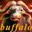 Buffalo Casino Free Slots Game