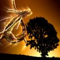 Thunder Dragon-HEALING 03 Free