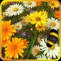 야생 꽃 3D 라이브 배경 화면