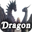 Dragon Ebook