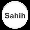 Sahih Bukhari in English