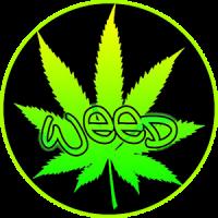 Weed Marijuana Leaves Wallpaper