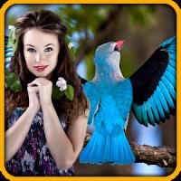 鳥フォトエディタ