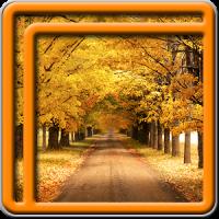 Herbst Live-Wallpaper