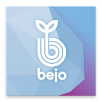 Bejo's Experience