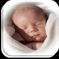 Desarrollo del Bebé