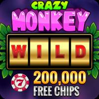 Crazy Monkey Slot. VIP!