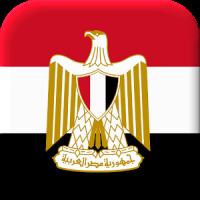 Egyptian Flag Live Wallpaper