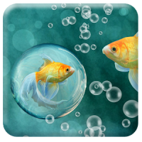 Betta Fish 3D Wallpaper