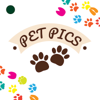 Pet Pictures - Photo Editor - Pet Face Wallpapers