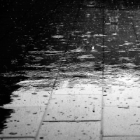 live wallpapers rain water