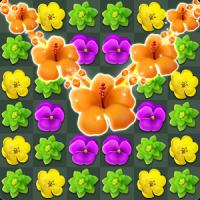 Flower Match Master