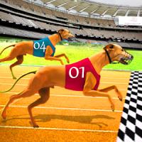 Dog Racing - Dog race Simulator - Pet Racing game