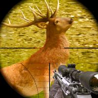 Deer Sniper Hunting 2020