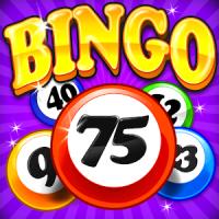 Bingo Craze
