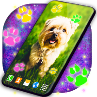 Cute Puppy Live Wallpaper Dog Paws Wallpapers