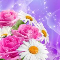 Blumen Live Hintergrund