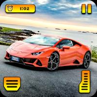 Real Car Race