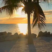 카리브 해변 해안 LWP