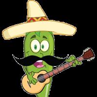 Latin Hits Music Radio