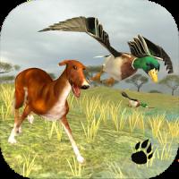 Bird Dog Simulator