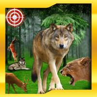 Wild Animal Hunt : Jungle