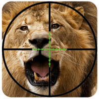 Hunting Lion Hunter 2016