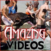 Most Amazing Videos HD