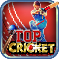 Top Cricket MultiPlayer