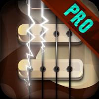 Bass Guitar Funk PRO