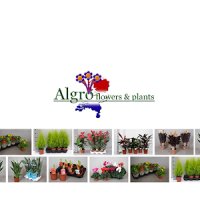 Algro Flower Shop