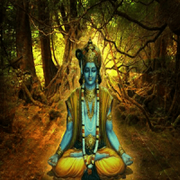 Yoga in Bhagwat Geeta Hindi