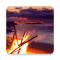 Bonfire HD Livewallpaper