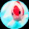 3D Aquarium Fishes Magic Touch Wallpaper
