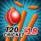 T20 Cricket 2018