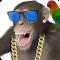 Funny Talking Monkey