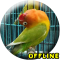 MP3 Lovebird Paud Offline