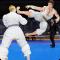 Royal Karate Training Kings