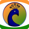 Peacock Browser